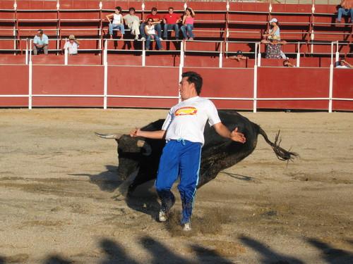 Concurso Cortes 2005