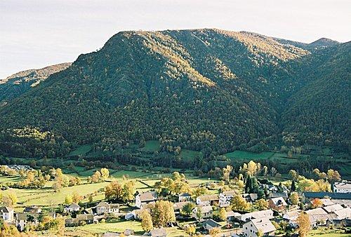 La devesa de Caboalles en otoño