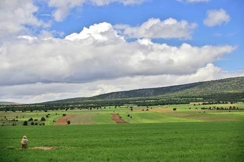Camino de Formiche(Alto)