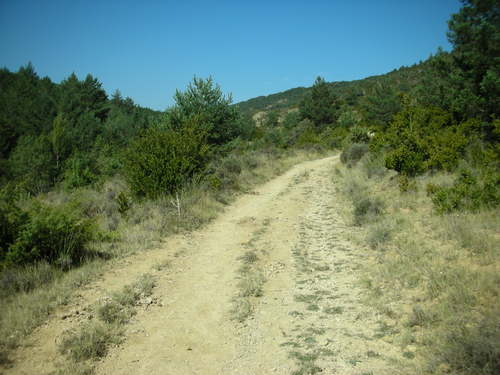Pilgrim trail through fighting bull territory
