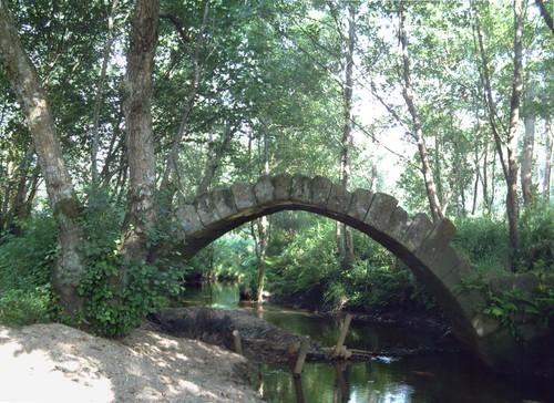 ponte de xuño