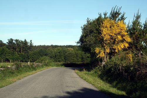Carretera hacia Anafreita