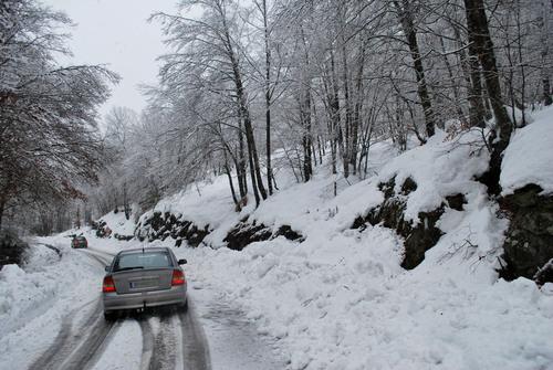 Carretera C153 - Coll de Condreu [28.12.2008]