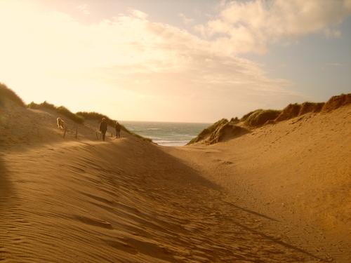 Holywell Bay Dunes