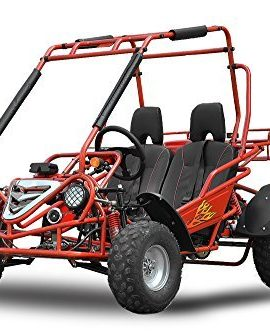 Maxi-Buggy-200cc-Oil-cooled-E-Start-Automatic-CVT-with-Reverse-gear-Off-road-Quad-ATV-Bike-Midi-0
