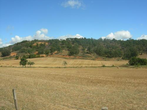 monte El Otero