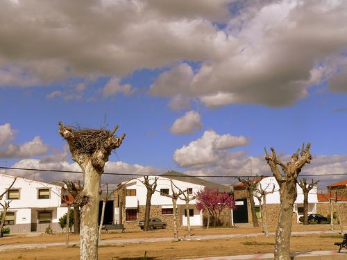 Nubarrones en Pizarro.