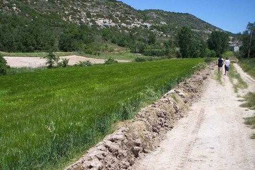 Camino de Caspueñas