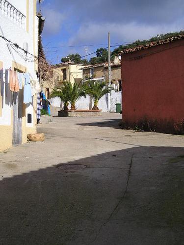 Camino Villaralto ( Los Pedroches) - Guadalupe. Llegando a Cañamero. Octava y última etapa. Enero de 2004