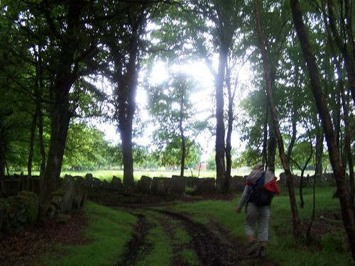 Bonito camino con lajas de piedras, saliendo de Miraz.