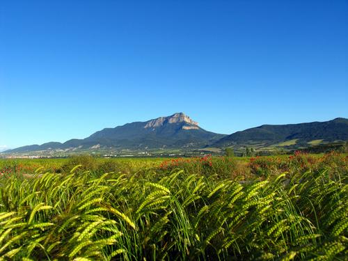 Peña Oroel campos de abay