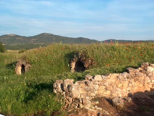 Cuevas Vino 4