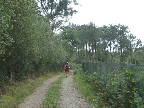 Camino inglés de Santiago. Subiendo a As Travesas (A Coruña)