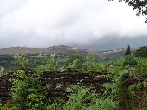 O Coto do Cerro