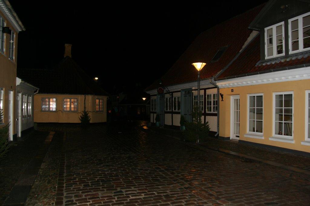 HC Andersens Hus by night