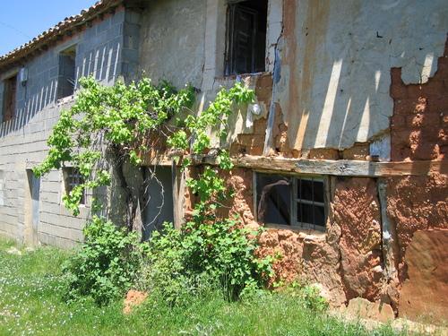 Casas de la Calle Real, Valdegrulla