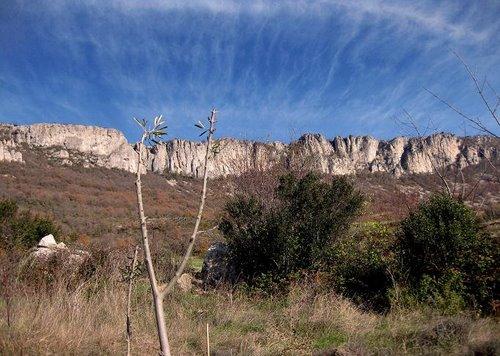 ULIBARRI (NAVARRA) Olivo, desde Ulibarri hasta el cielo