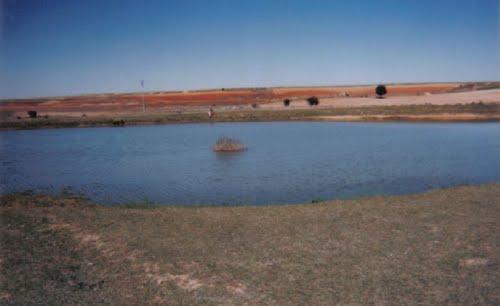 Marazovel charca El Navajo
