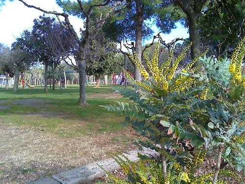 Parc del Grao