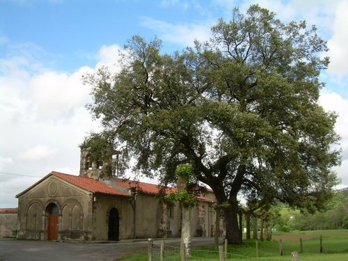 Iglesia de San Julián y Encina Centenaria