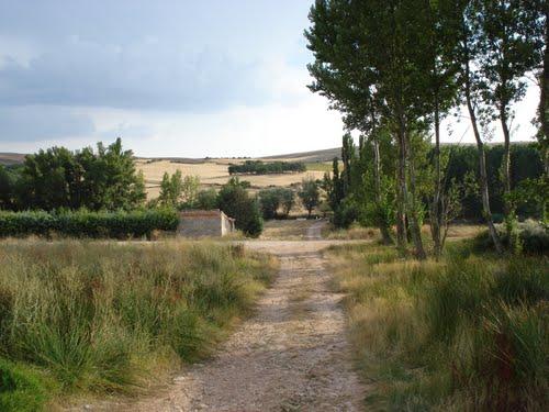 """Camino """" La Fuente Vieja"""" por J.R"""
