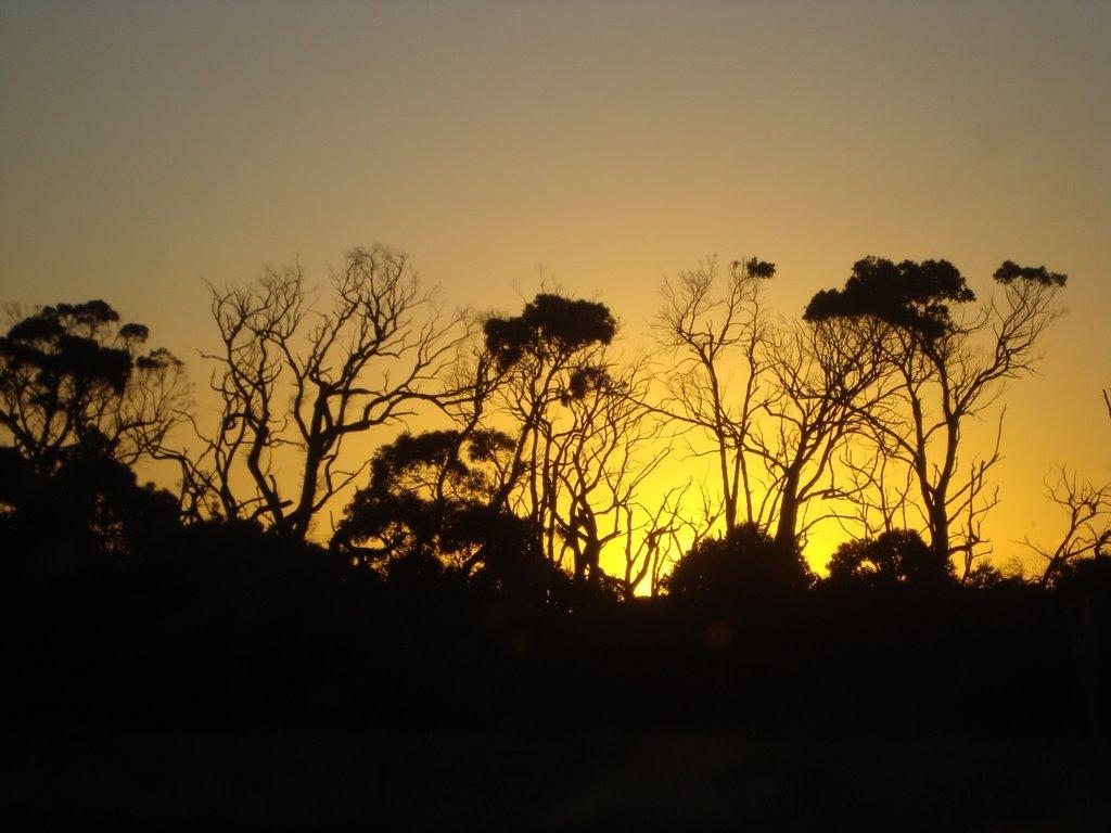Sun Set at Gippsland VICTORIA