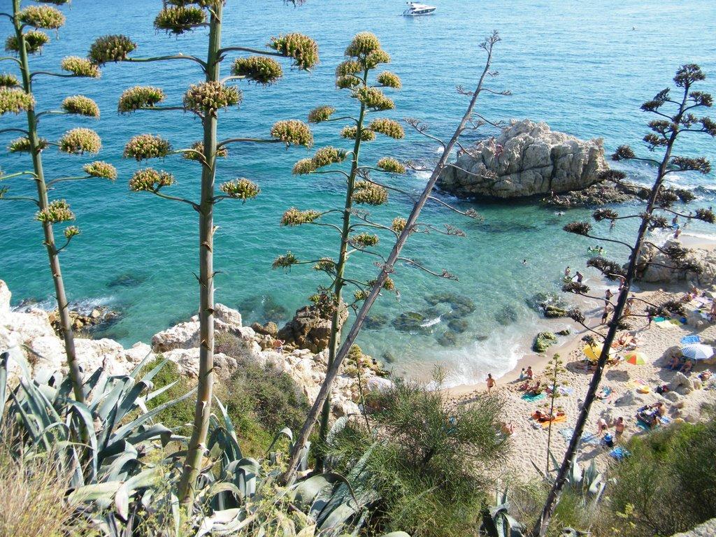 Costa Maresme(august 2009)