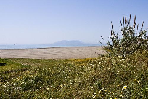 Playa abierta
