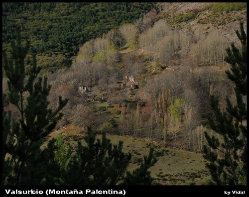 Valsurbio (Montaña Palentina)