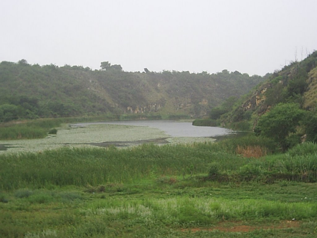 vista do Rio Jacaré
