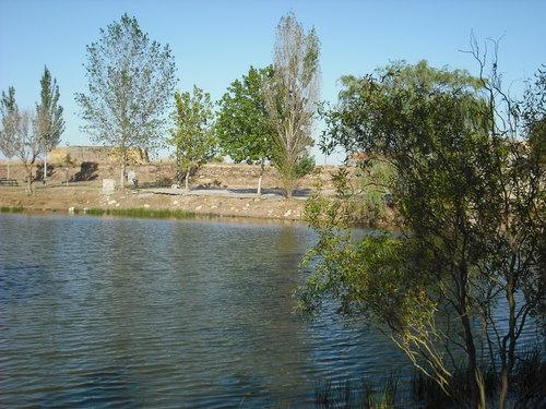charca de Negrilla de Palencia