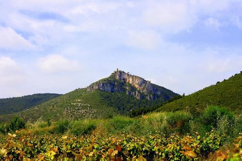 Paisaje (Castellvi-Alt Penedés)