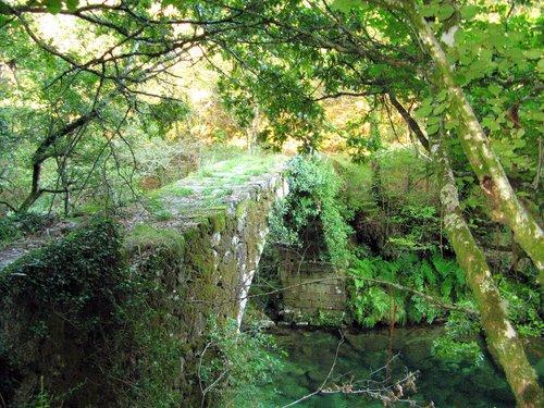 Ponte medieval de Fofe, no rio Teia (Fofe, Covelo, Galiza)