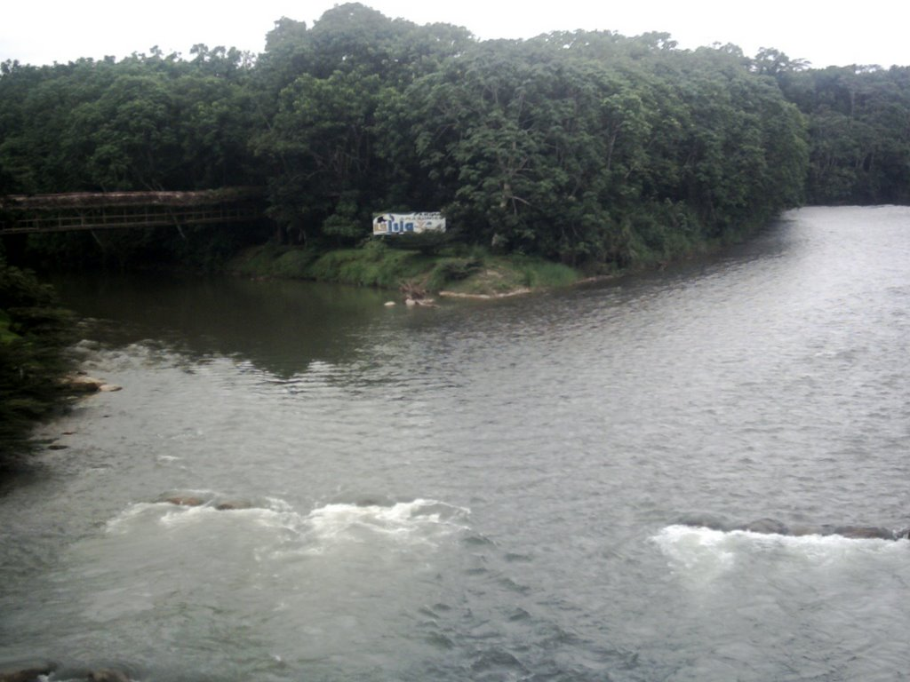 Tena River/ Pano River