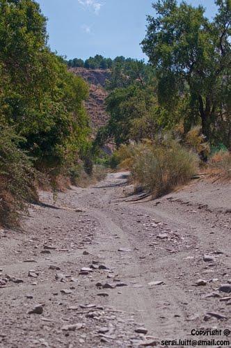 Camino Ramblancha al rio