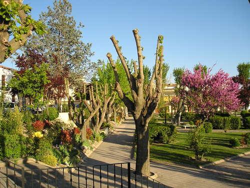 Parque municipal de Corral de Almaguer