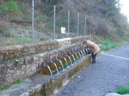 Fuente del Cabrito. Entre Camarena de la Sierra y Valacloche