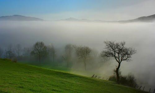 Niebla en los campos de Urrotz