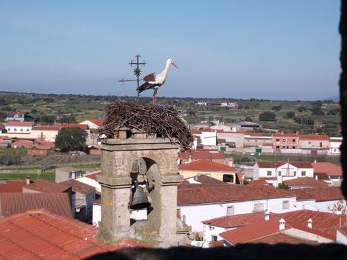 Albalá desde la torre