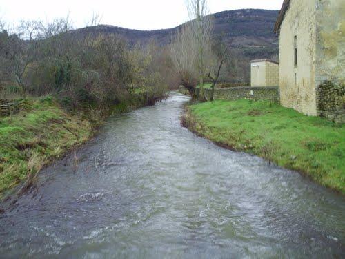 río de hornillayuso en otoño