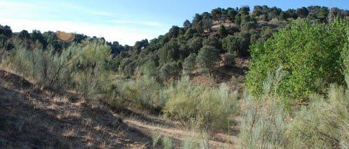 Sergio Leone For a fistful of dollars Film location, Rio Bravo Canyon