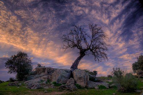 Peinando Nubes