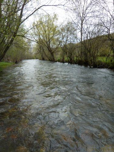 Río Luna en el Coto de Villafeliz de Babia