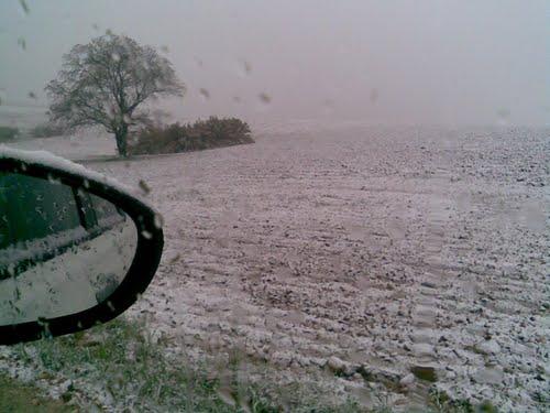 Nieve en campillo