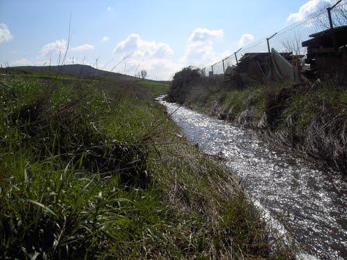 el arrollo a su paso por Cañada de Calatrava