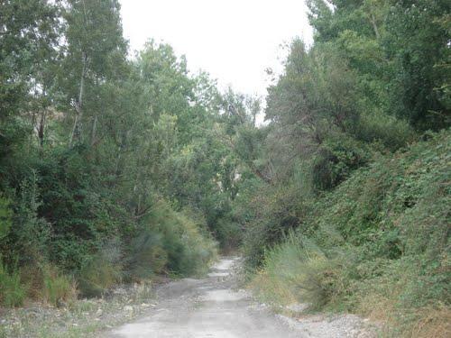 Cauce del Río Almanzora
