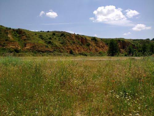 Cárcavas en la Ribera del Torío, Villanueva del Arbol