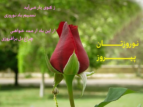 Happy Nowruz (NEW IRANIAN YEAR Starts in the first day of Spring,March 21th)