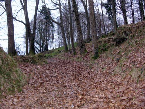 Camino de Murgil (464 m)