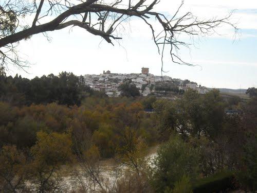 Vista de El Carpio y debajo, el eterno Guadalquivir. Diciembre de 2009